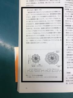 兼島孝ペットを感染症から守る本image2.jpeg